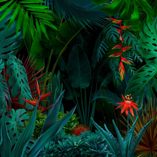 It's a jungle out there for web content. Make sure your content grabs attention in 2020...